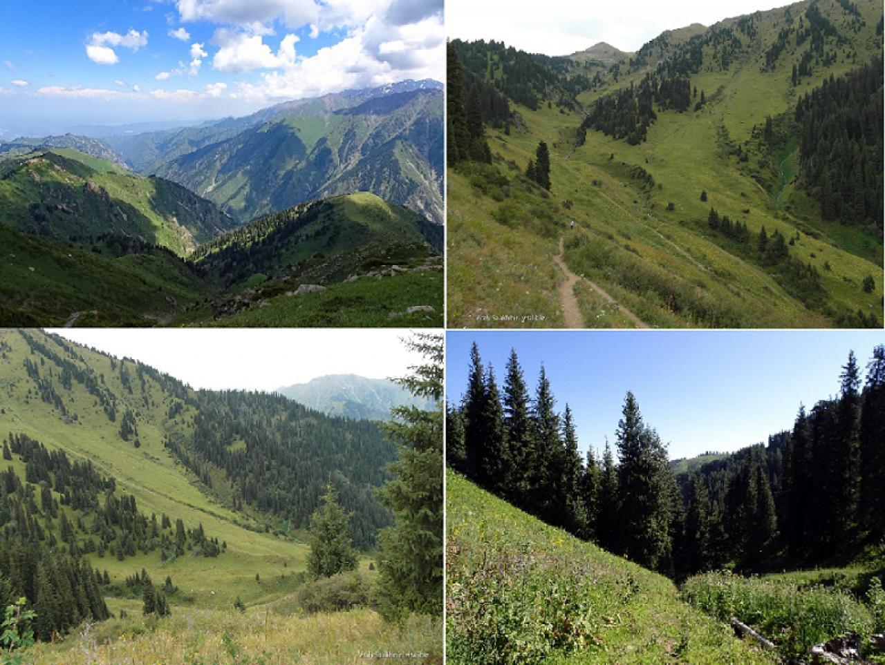 Пять самых излюбленных горных троп в Алматы